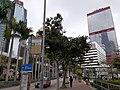 HK SW 上環 Sheung Wan 民光街 Man Kwong Street near 中環 Centrel Ferry Piers 維多利亞海港 Victoria Harbour February 2020 SS2 02.jpg