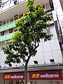 HK Tram 105 tour view Hong Kong Island North July 2020 SS2 36.jpg