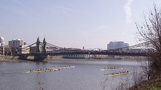 Hammersmith Bridge - Rowing crews racing under Hammersmith Bridge