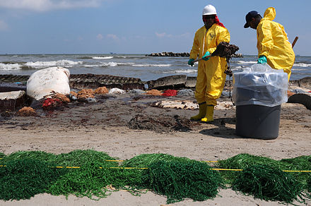 Workers contracted by BP clean up oil on a beach in Port Fourchon, Louisiana, 23 May 2010 HSE workers clean up Port Fourchon beach 2010-05-23.JPG