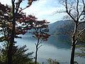 Hakone Ashinoko lake dsc05423.jpg