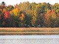 Ham Lake, MN 55304, USA - panoramio.jpg