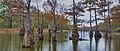 Harrell Lake.jpg