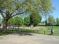 Harrow Weald Recreation Ground Play Area - geograph.org.uk - 1897199.jpg
