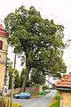 Heřmaň kostel sv. Václava2.jpg