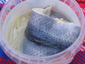 Herring as food