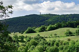 Hessen LautertalOdenwald Reichenbach NSGFelsberg1431001.jpg