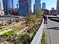 High Line td 82 - West Side.jpg