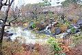 Hinokichō Park - Tokyo, Japan - DSC06706.JPG