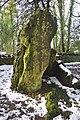 Hoar Stone - panoramio.jpg