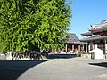 Hongan-ji National Treasure World heritage Kyoto 国宝・世界遺産 本願寺 京都322.JPG