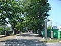 Honjo jinja in Gifu2008-1.jpg