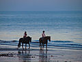 Horse riding on Sandown beach.jpg