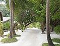 Hudhuranfushi - panoramio - Kaz Ish (2).jpg