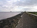 Humber Sea Wall - geograph.org.uk - 59941.jpg