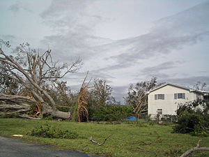 Coral Springs, Florida - Hurricane Wilma aftermath