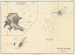 Selvagem Grande Island - Image: IMRAY(1884) p 0129 SALVAGE ISLANDS