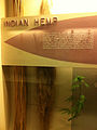 INDIAN HEMP at the Field Museum in Chicago.jpg