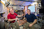 ISS-43 Scott Kelly and Terry Virts share a snack the Unity module.jpg