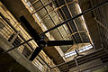 India - Delhi fans on the ceiling - 4944.jpg