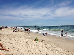 Delaware Seashore State Park - Beach at Indian River Inlet