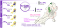 Info graphic design on demographics of Bhubaneswar.png