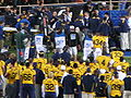 Injury timeout for Jahvid Best at OSU at Cal 2009-11-07 2.JPG