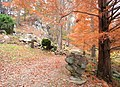 Innisfree Garden, Millbrook, NY - IMG 1584.jpg