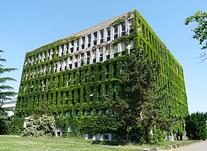 University of Strasbourg - Institute of Molecular and Cell Biology