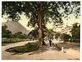 Interlaken, Grand Hotel Victoria, Bernese Oberland, Switzerland-LCCN2001701184.jpg