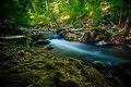 Irreler Wasserfälle, Naturpark Südeifel.jpg