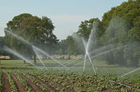 "Irrigation system ""Perrot"" in action.jpg"