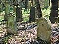 Jüdischer Friedhof Fürfeld 19.jpg