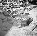 Jerbas za jabolka, koši in drugo, pr' Petona, Kortina 1949.jpg