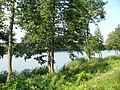 Jezioro Złotowskie - jedno z 5 jezior nad którymi położony jest Złotów - panoramio.jpg