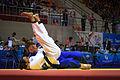 Judo (21976525551).jpg