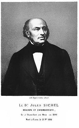 Julius Sichel