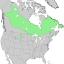 Juniperus horizontalis range map 1.png