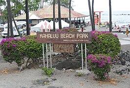 Kahaluu Beach