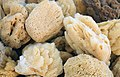 Kalymnos sponges 4.jpg