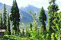Kashmir Pakistan - Arang Kel 39.JPG