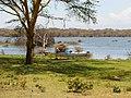 Kenya 2013. Lake Naivasha. - panoramio (12).jpg