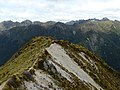 Kepler Track, New Zealand (67).JPG
