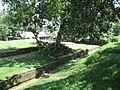 Khana Mihirer Dhipi or Mound 26.jpg