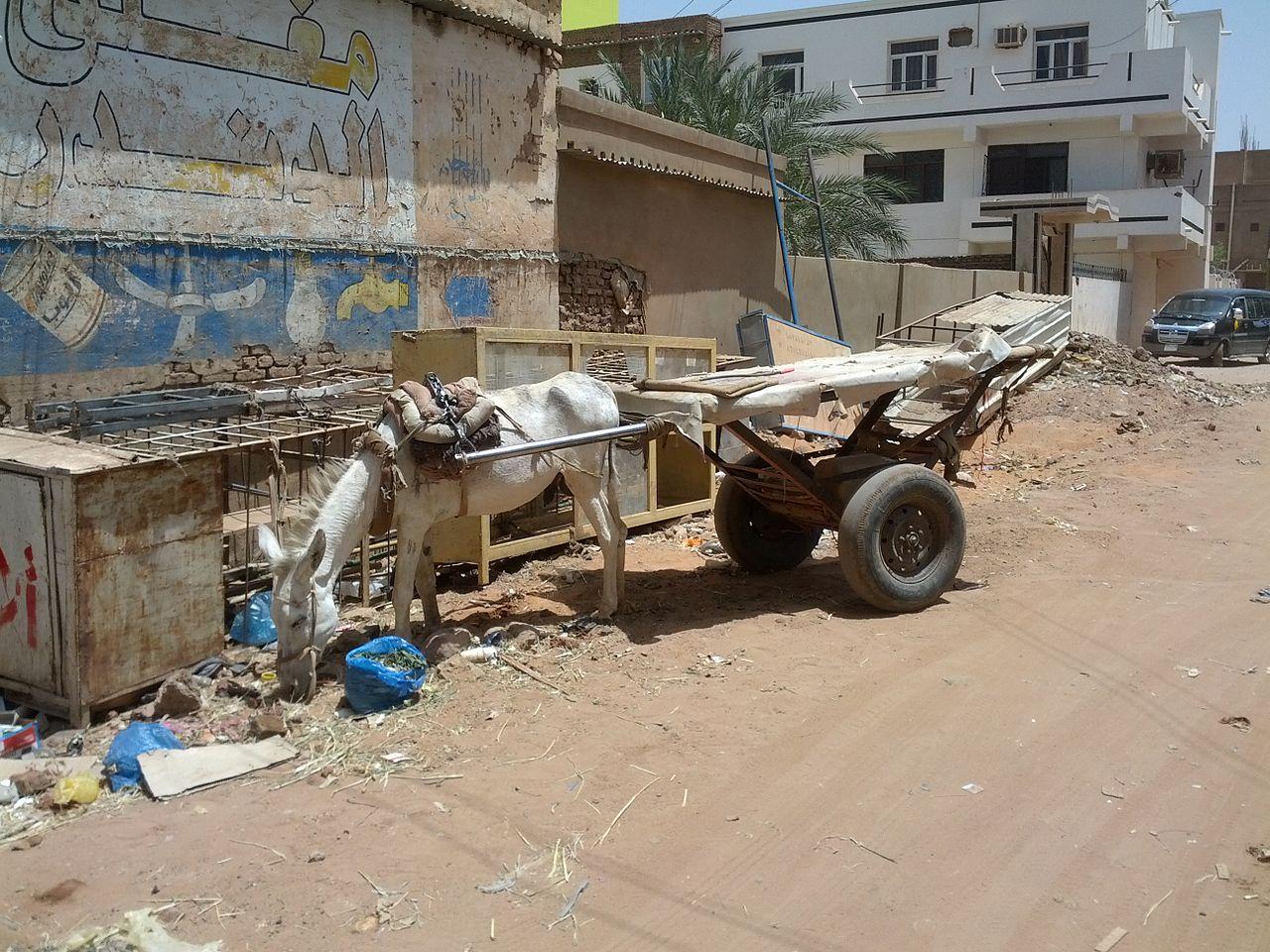 Khartoum Street.jpg