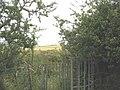 Kissing gate on the path leading east from Llanfair yng Ngwaredog - geograph.org.uk - 918480.jpg
