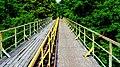Koronowo - widok mostu kolei wąskotorowej. - panoramio.jpg