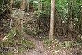 Koya Pilgrimage Routes(Nyonin-michi)11.jpg