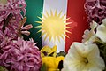 Kurdish flag with flowers 06.jpg