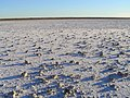 Lake Eyre 2004 - panoramio.jpg